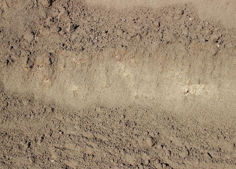 Rich Premium Topsoil